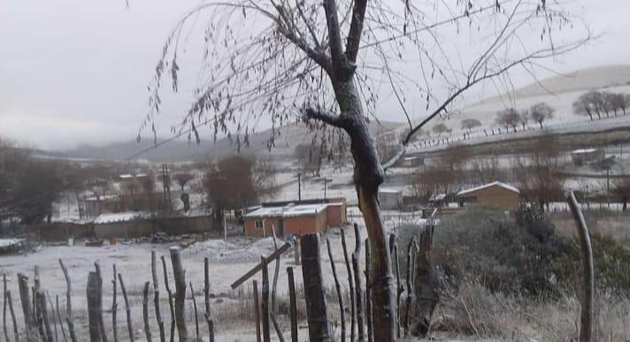 Tafi del Valle: Comenzó a nevar y la temperatura bajo a -1ºC