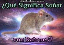Qué Significa Soñar con Ratones?