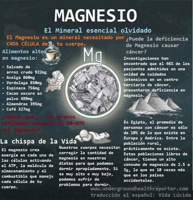 Resultado de imagen de magnesio infografía