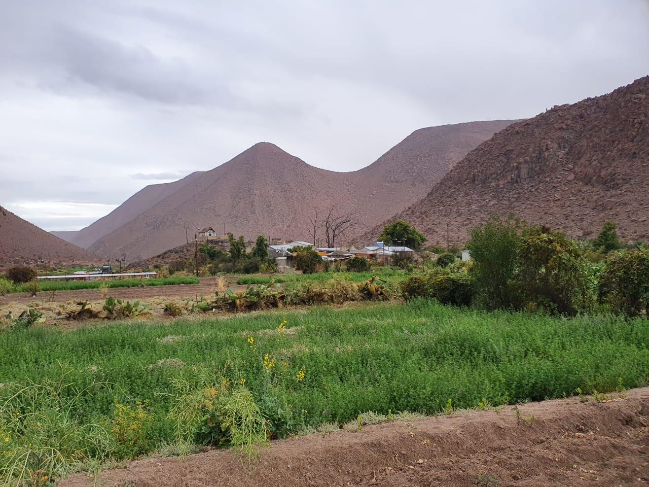 Nama Región de Tarapacá