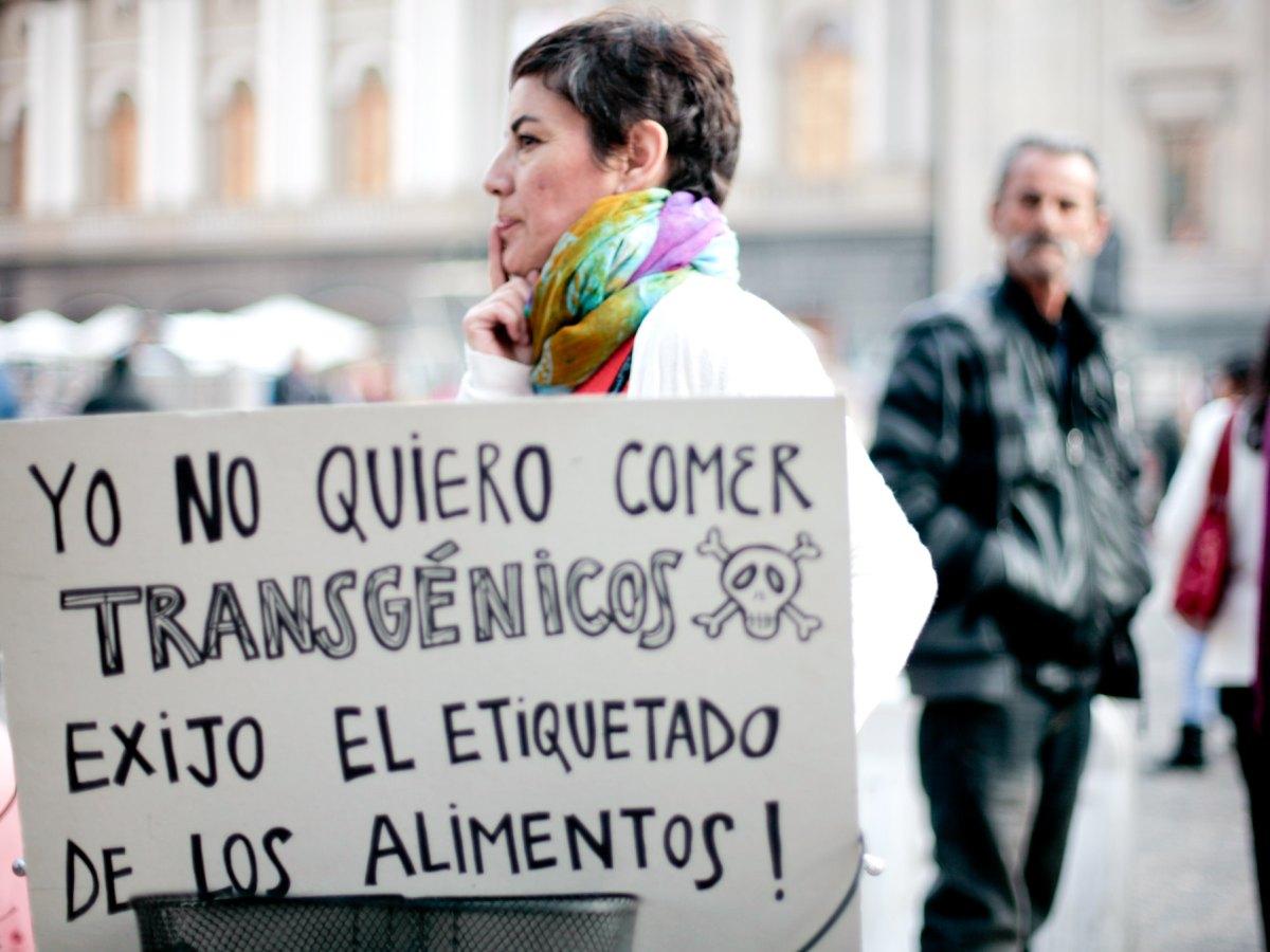Marcha mundial contra Monsanto, Santiago, Chile.