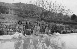 Safareig al mig de la vall (cedida Domingo Preixens)