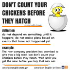 idiom chick