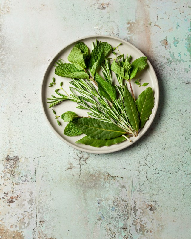Fresh green herbs arranged on a plate
