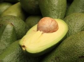 Cierra Costa Rica su mercado al aguacate mexicano