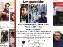 Al menos 20 desaparecidos en Jalisco en lo que va de 2018