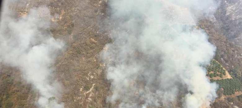 No será necesario reforestar áreas siniestradas por incendios, si SEMARNAT no da autorización de cambio de uso de suelo