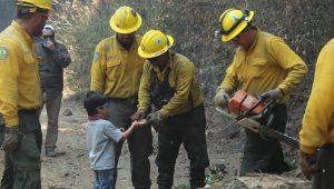 Fotogalería: Conoce quiénes son los que están salvando los bosques