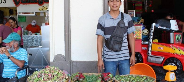 Pitaya, fruta exótica del sur de Jalisco