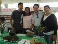 Jóvenes de Gómez Farías convierten lirio en fertilizante orgánico
