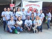 """Realizaron """"Croquetón del Amor"""", evento con causa por los animales desprotegidos"""
