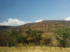 Los incendios y deforestación siguen presentes