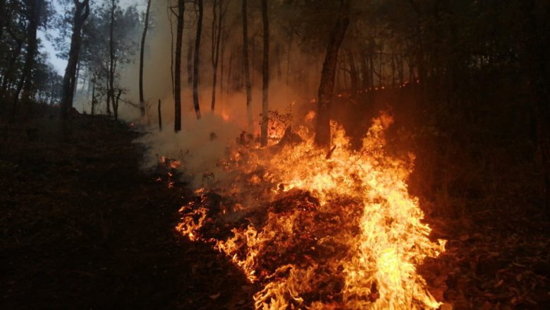 58 brigadistas combaten incendio en límites de Ciudad Guzmán y Zapotiltic