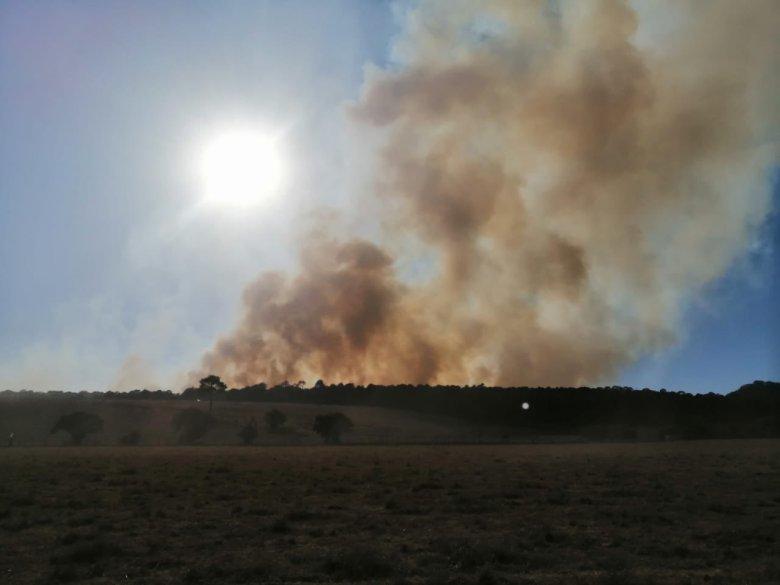 Ciudad Guzmán y el sur de Jalisco, en medio de una sequía severa
