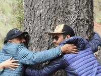 Invitan a celebrar el Día del Árbol en el Parque del Nevado de Colima