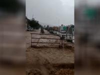 Por fuerte tormenta, Ciudad Guzmán se inundó y cayeron árboles