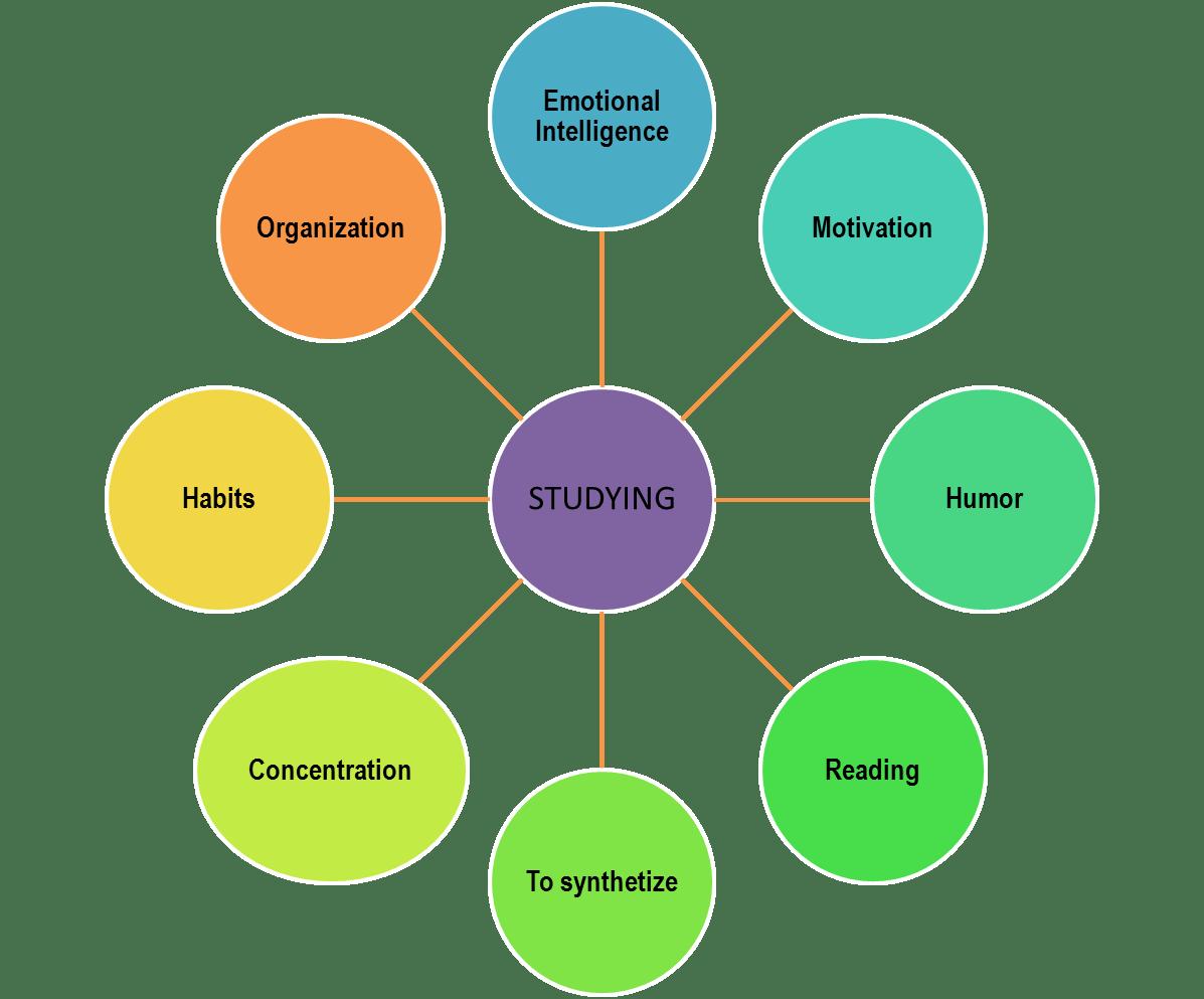 web diagram graphic organizer t12 electronic ballast wiring organizers elsyone