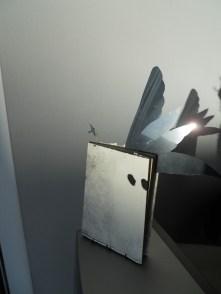 Volare. Llibre intervingut
