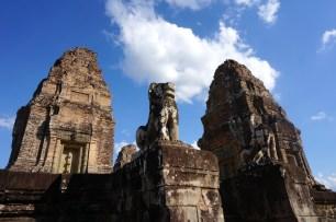 Steinerne Natur in Angkor