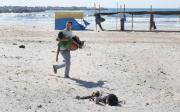 Beach-Casualties