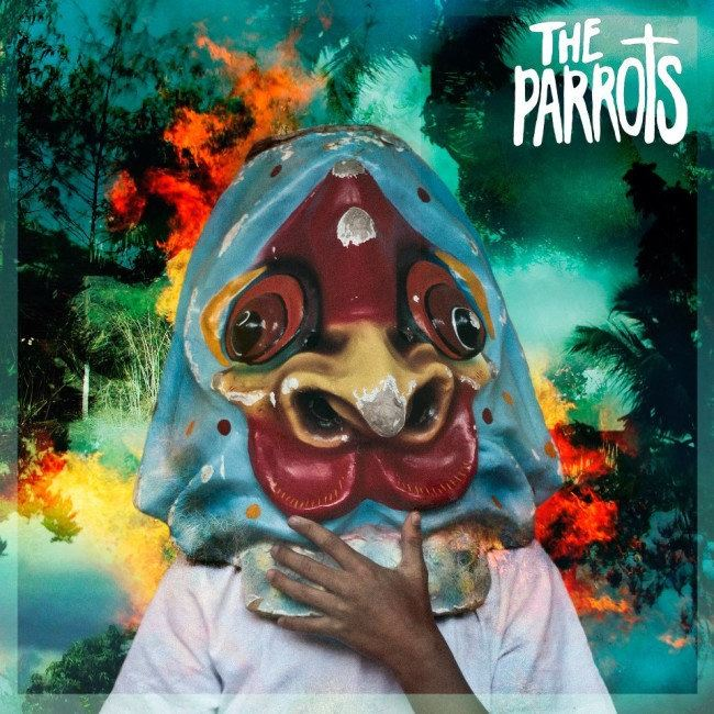 The Parrots - Aden Arabie