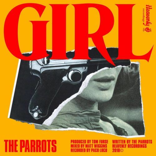 The Parrots Girl