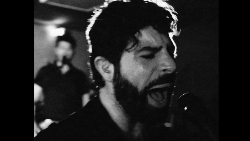 foals white onions