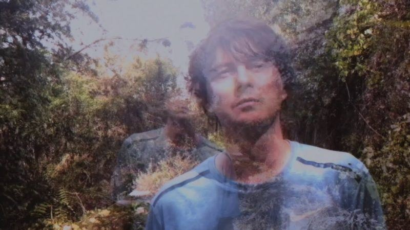 "Panda Bear viaja al trópico con ""Playing the long game"""