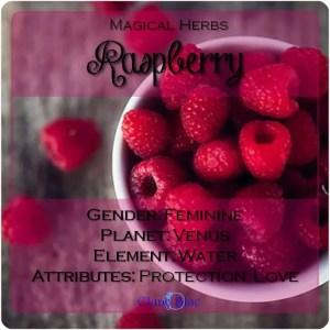 Raspberry Magical Meaning | Raspberry Magical Properties | Magical Herbs - Elune Blue