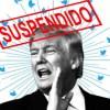 Donald trump suspended twitter