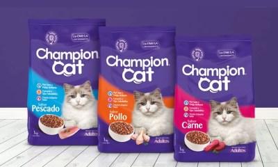 Champion CAT _8XEAUO4Uc