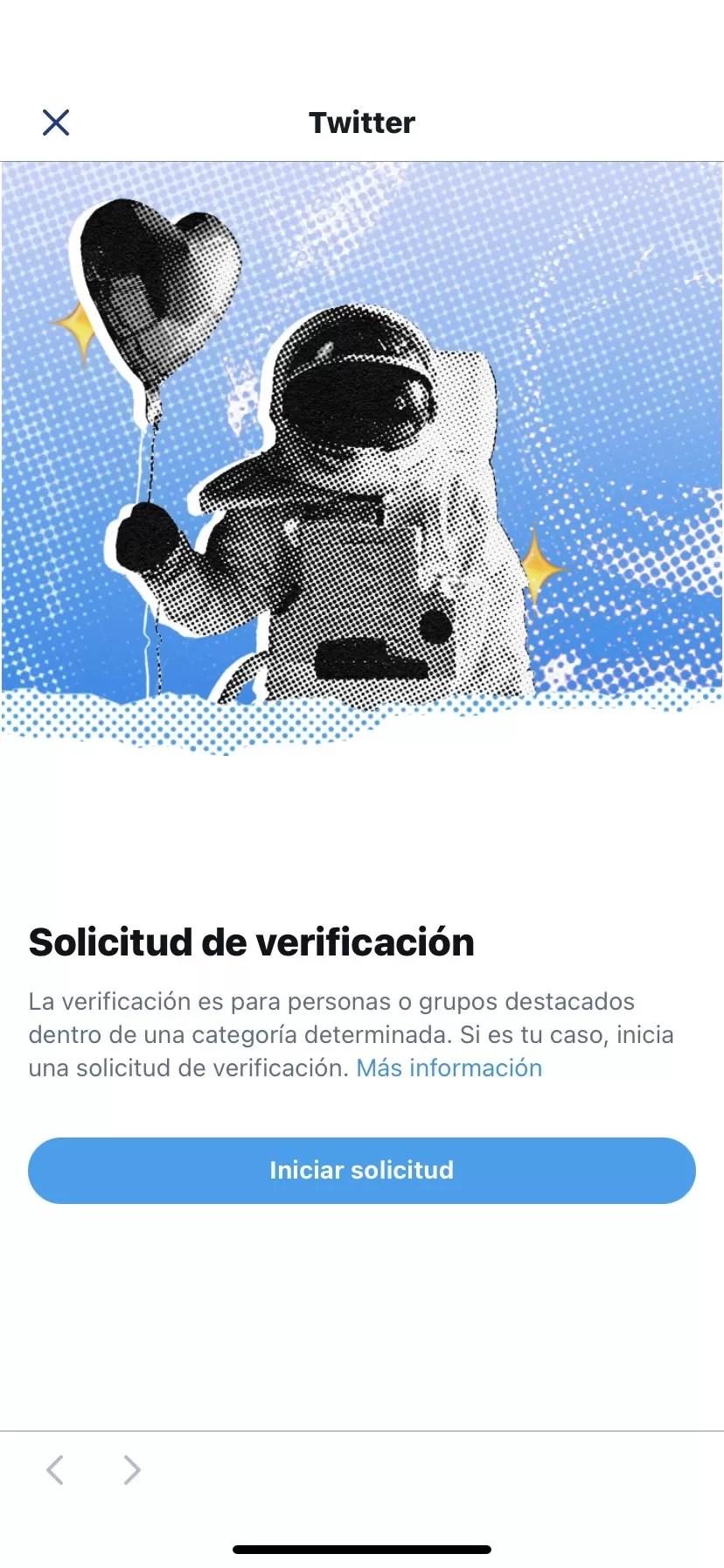 Verificación Twitter MdC99993