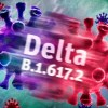 variante delta en chile 9013_303