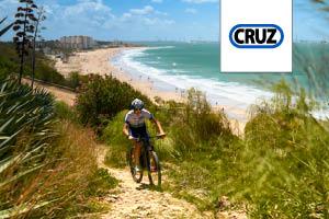 Bacas bicicleta Cruz