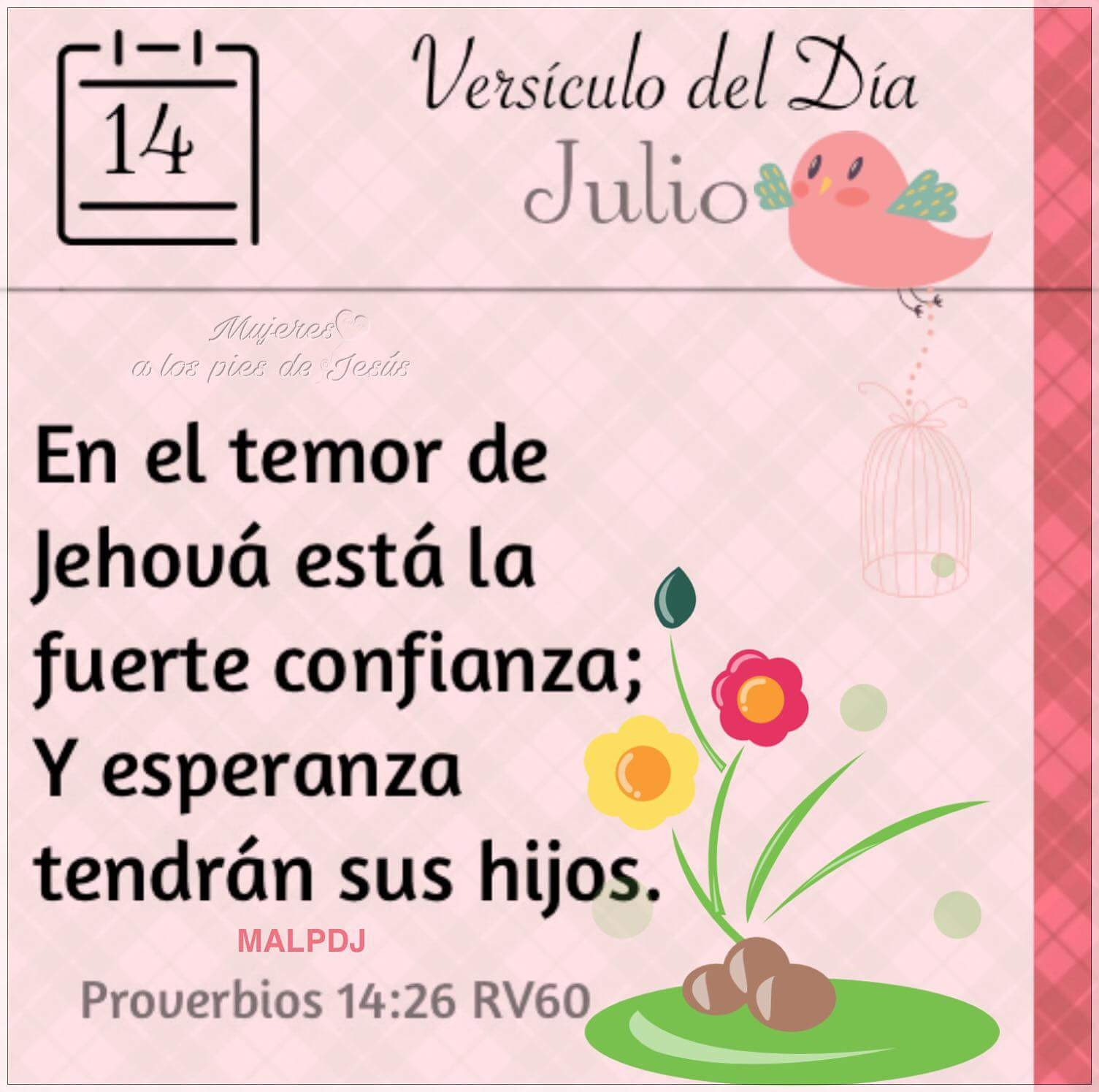 images Proverbios 14 26 el versiculo del dia