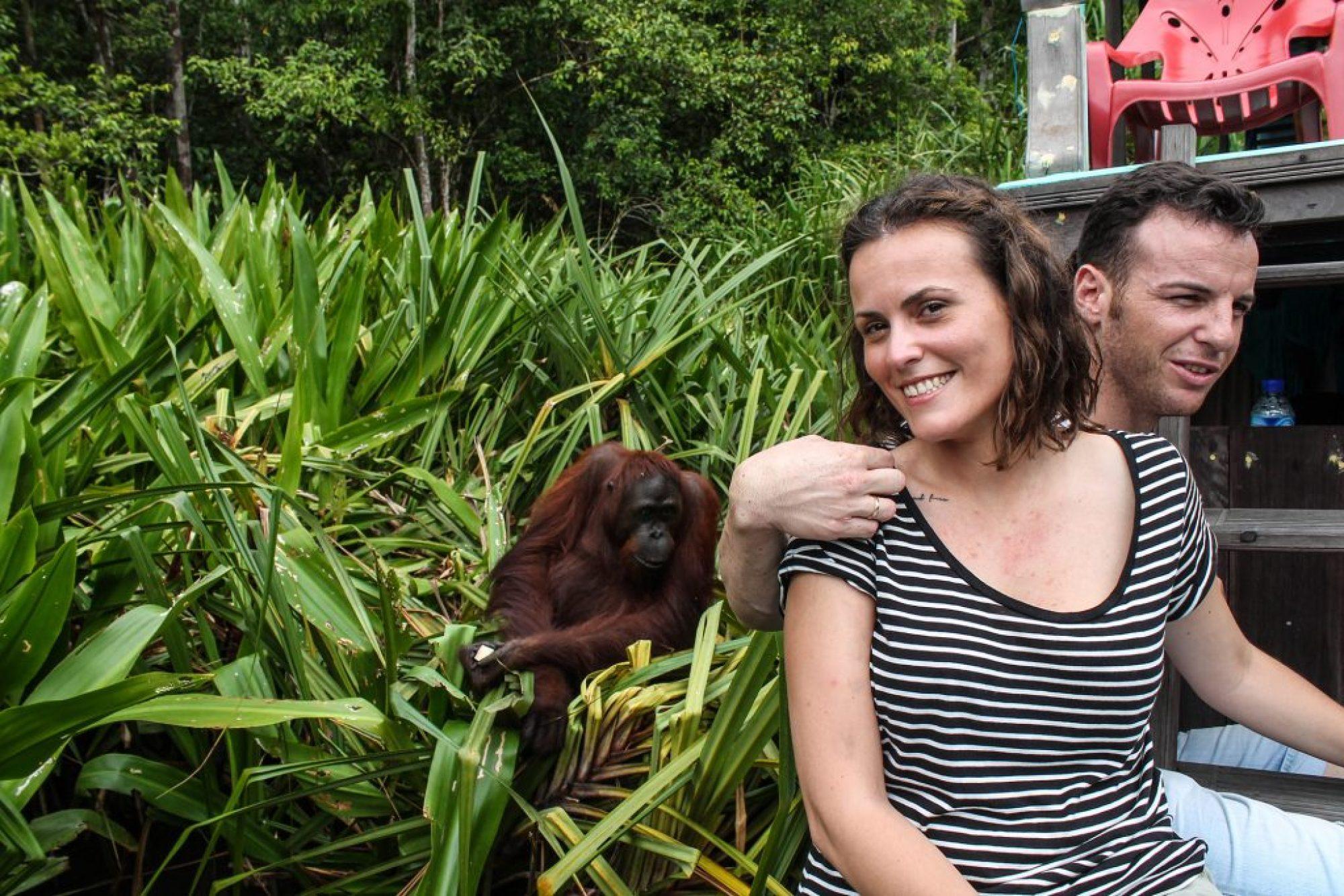 orangutanes-en-borneo-27