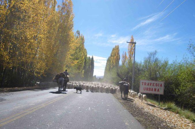 mapuches_copahue_argentina_elviajenotermina_blog de viajes