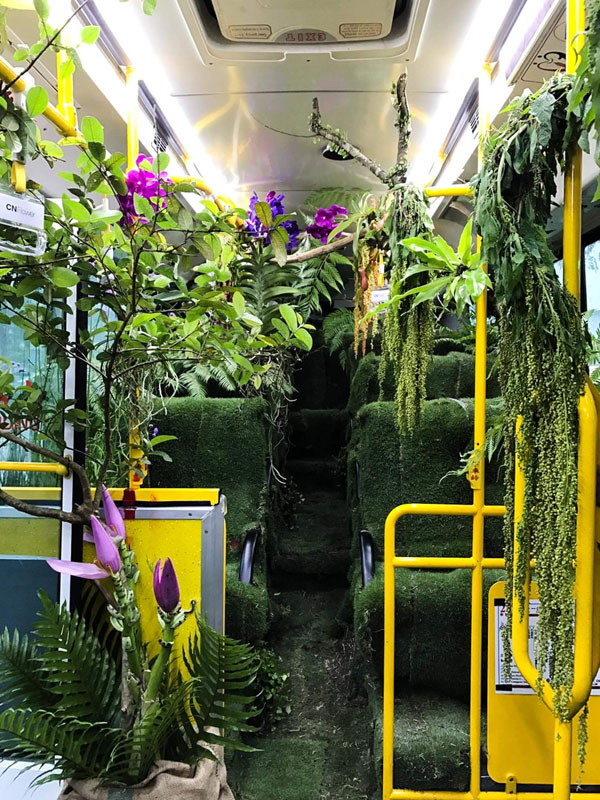 Forest Bus