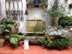 IMG-20171029-WA0008 Patio Juan Rufo, el patio de la armonía