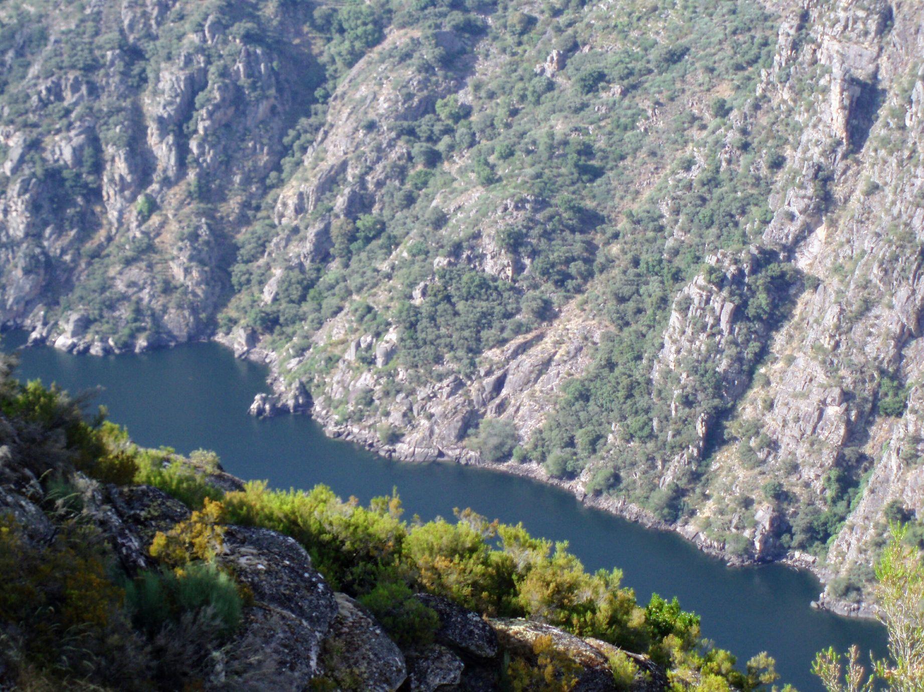 Río Sil visto desde lo alto