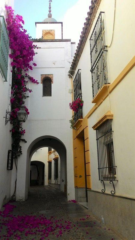 Mezquita_de_los_andaluces_2