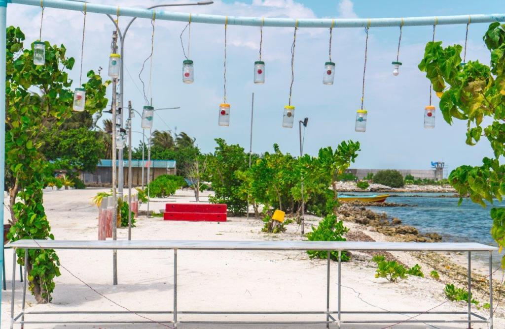 maldives budget travel fly to maldives maldives offers