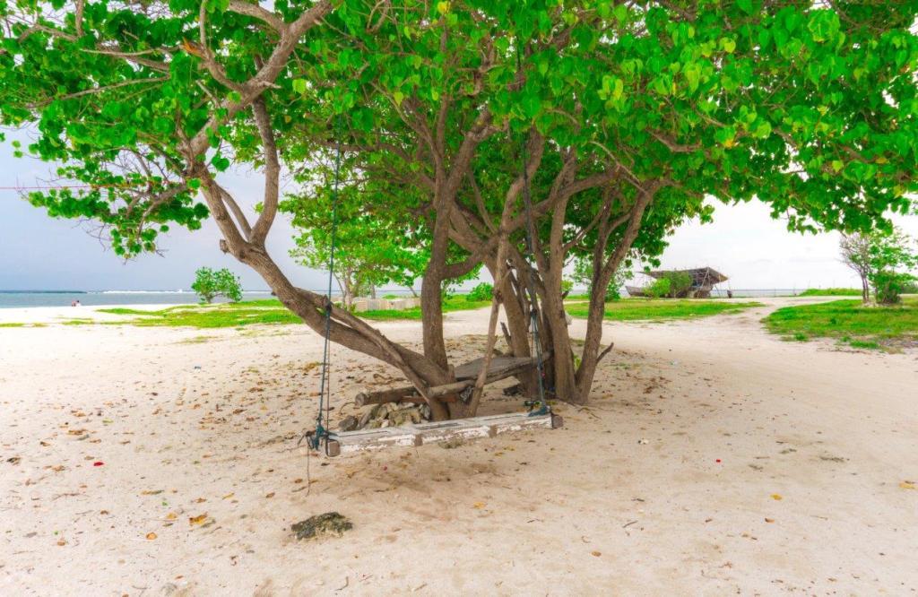 maldives trip cost cheap maldives cheap maldives holidays