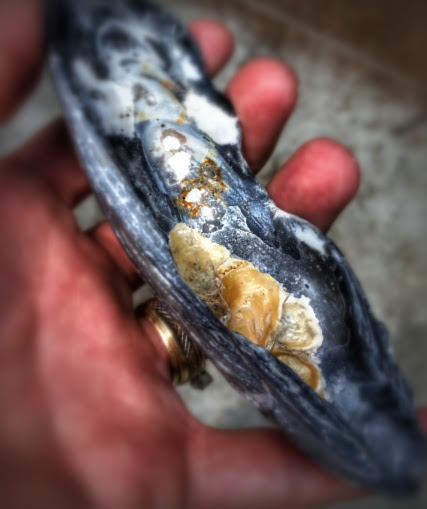 shell unfilled 7.16
