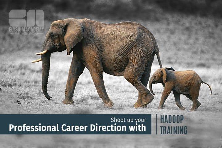 professional hadoop training