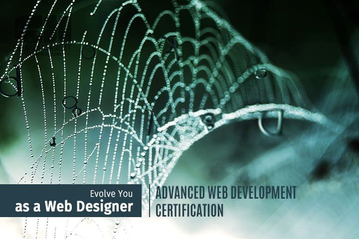 advanced web development certification