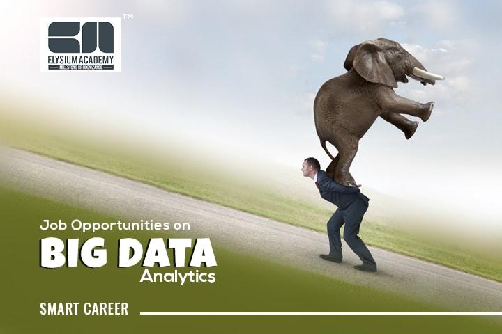 Big Data Analytics Career