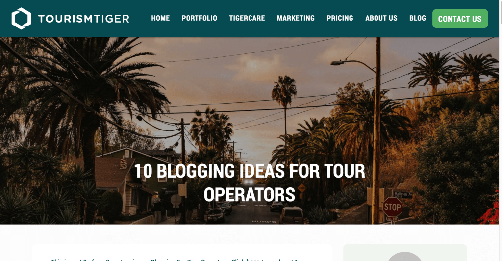 picture of a street lined with palm trees at dusk, text over image reads 10 blogging ideas for tour operators
