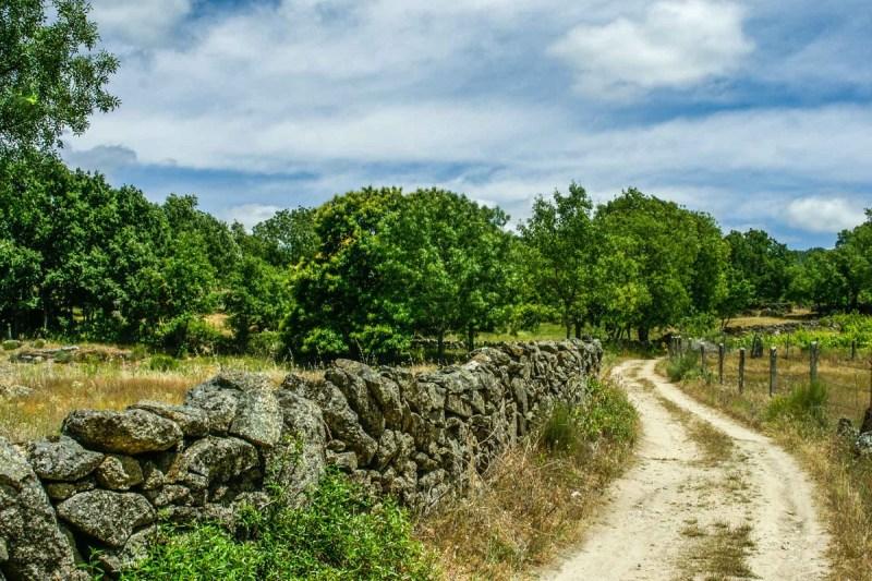 Caminos para practicar senderismo