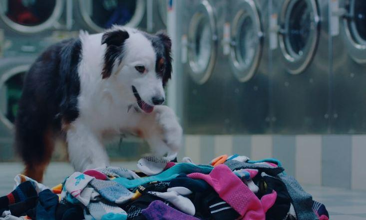 calcetines perdidos en la lavadora